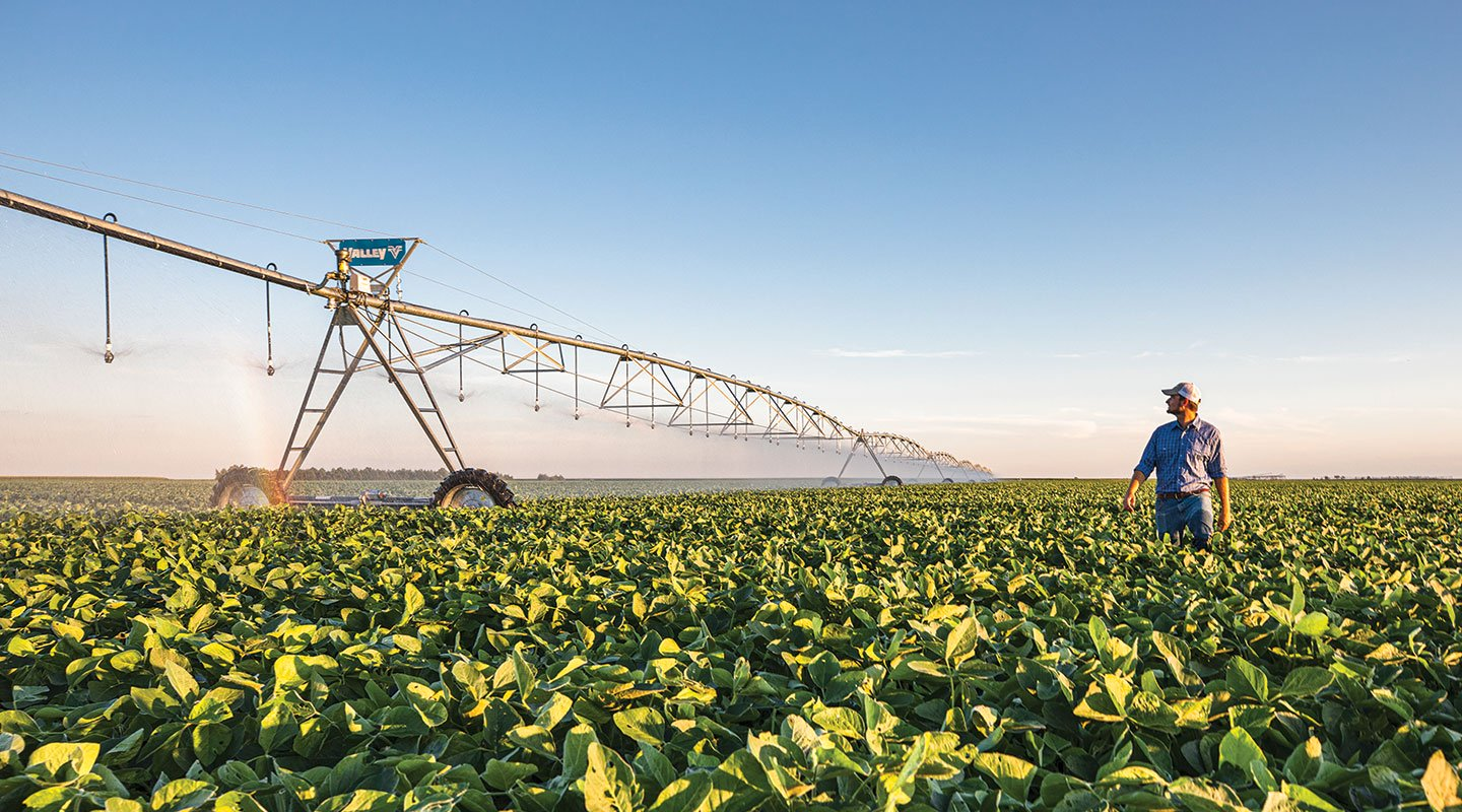 Valley farmer in field looking at his Valley center pivot