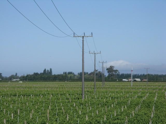 Utility-Distribution-Poles-2-Valmont-India