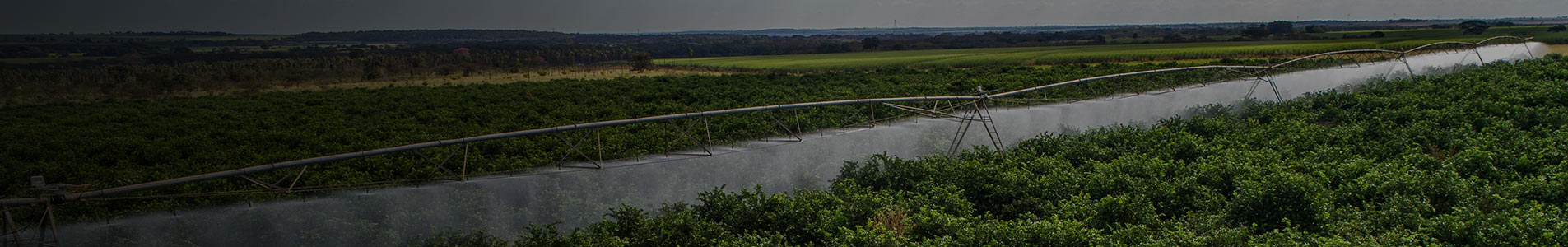 valley rice irrigation solutions