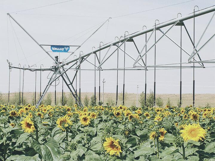Galvanized Irrigation Agriculture